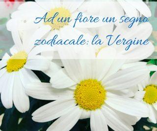 Ad un fiore un segno zodiacale: la Vergine