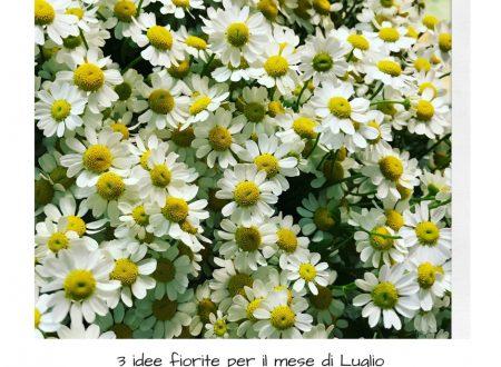 3 idee fiorite per il mese di Luglio