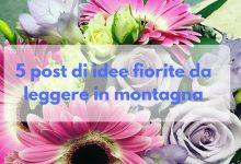 5 post di idee fiorite da leggere in montagna