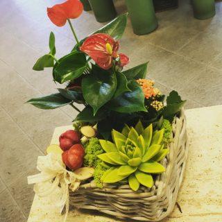 Centrotavola con piante a tema autunnale