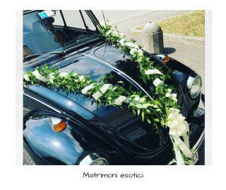 Matrimoni esotici