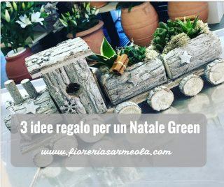 3 idee regalo per un Natale Green