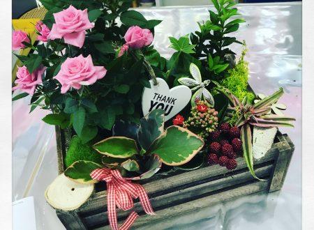 5 buone ragioni per regalare fiori